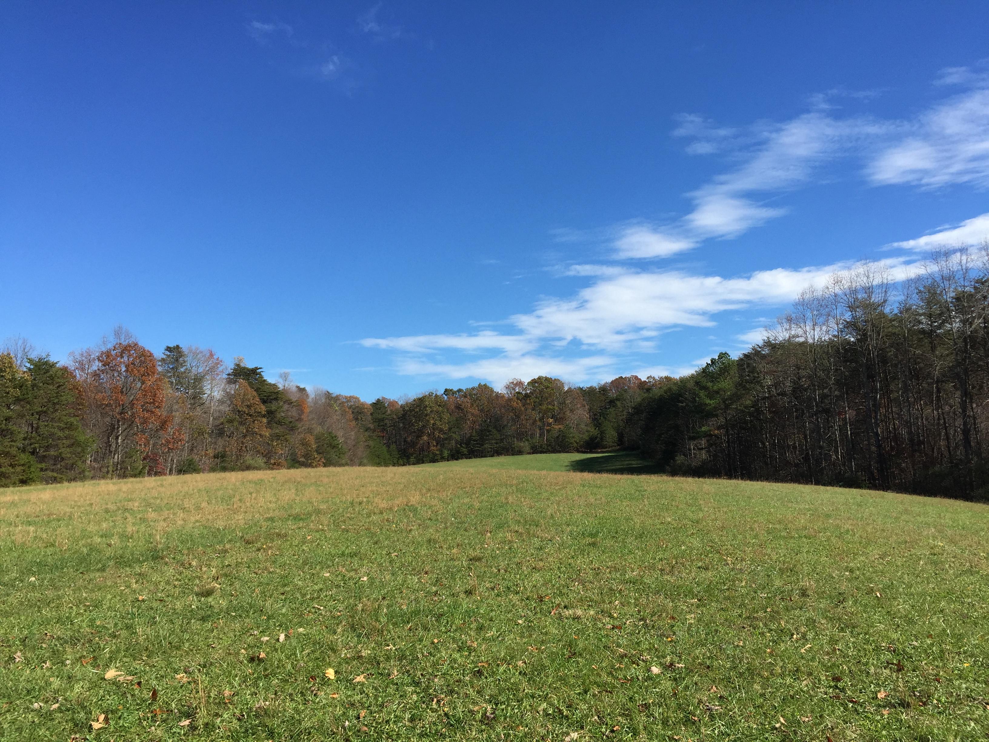 Beautiful Land near Smith Mountain Lake