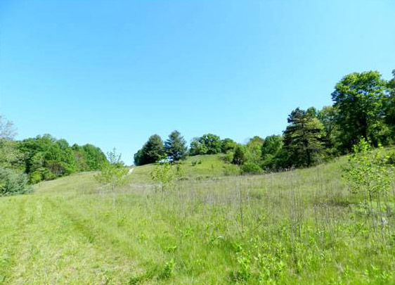 Land Near Smith Mountain Lake
